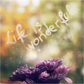 life is wonderfull